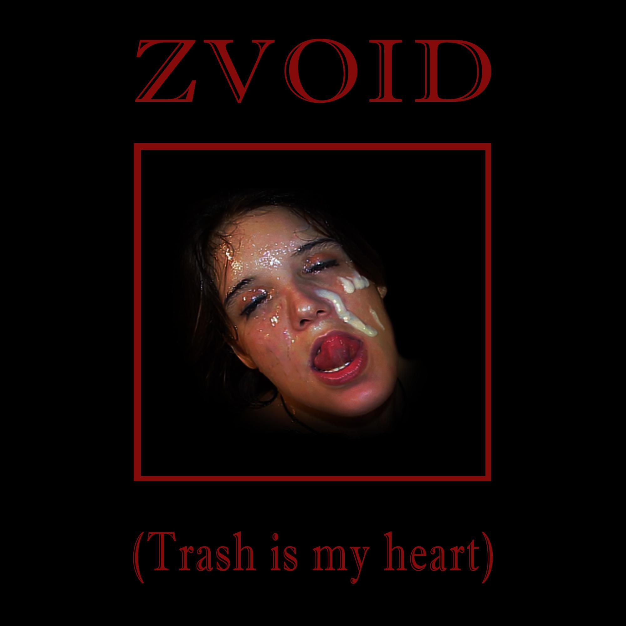 ZVoid - Ian Linter